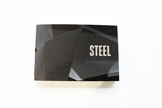 STEEL Booklet2.jpg