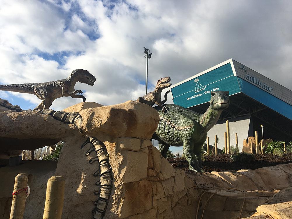 Dino Falls Opens