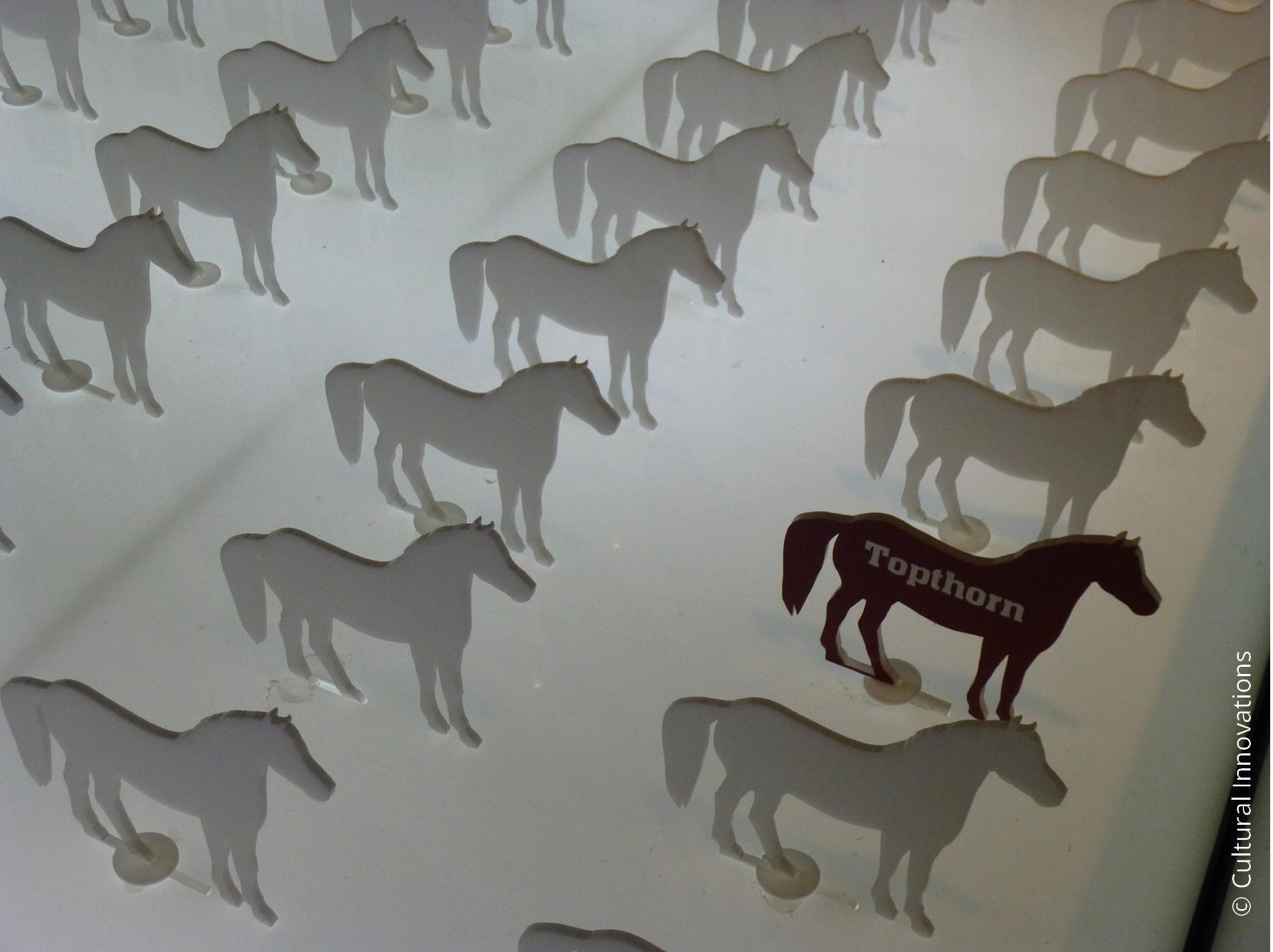 War Horse © Cultural Innovations