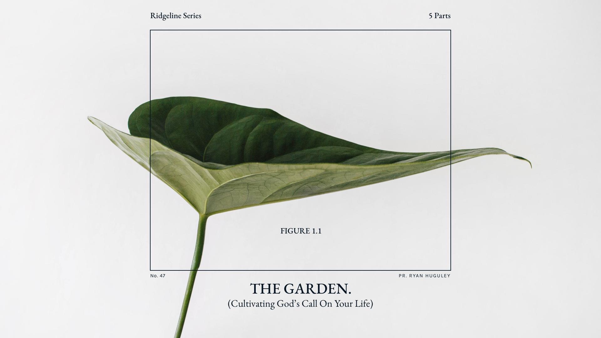 Garden-HD.jpg
