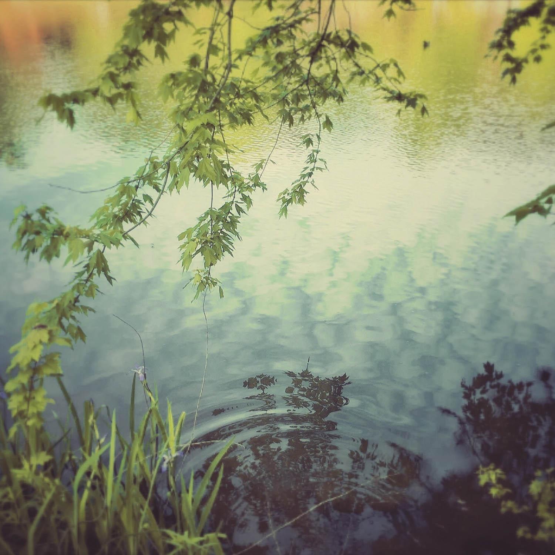 lake-avondale-#2.jpg