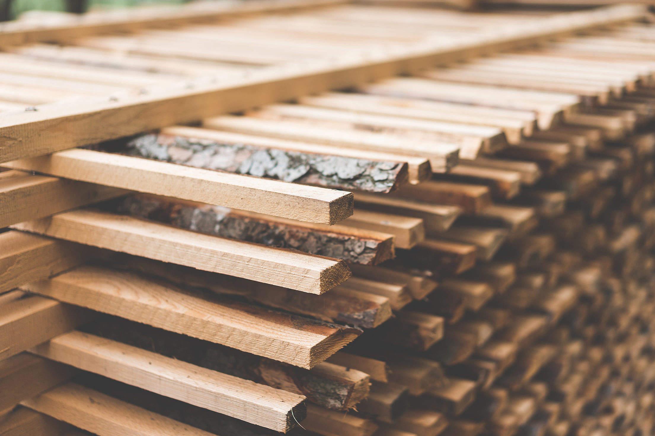 freshly-cut-wood.jpg