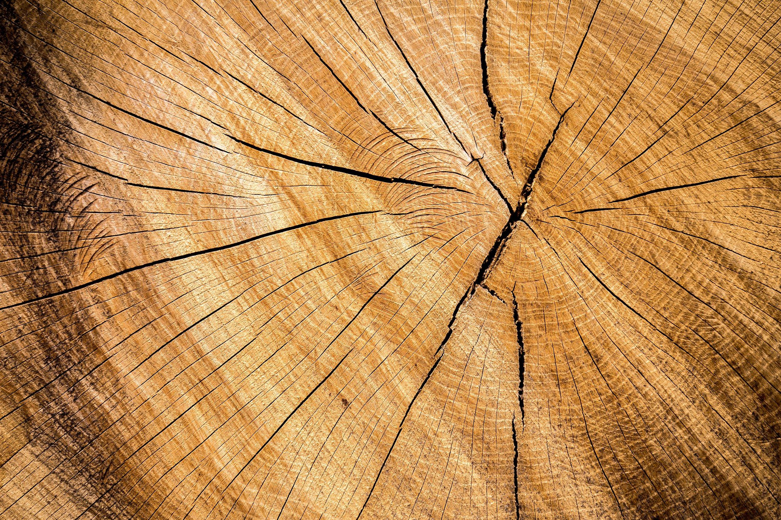photo-of-old-wood-cedar.jpg