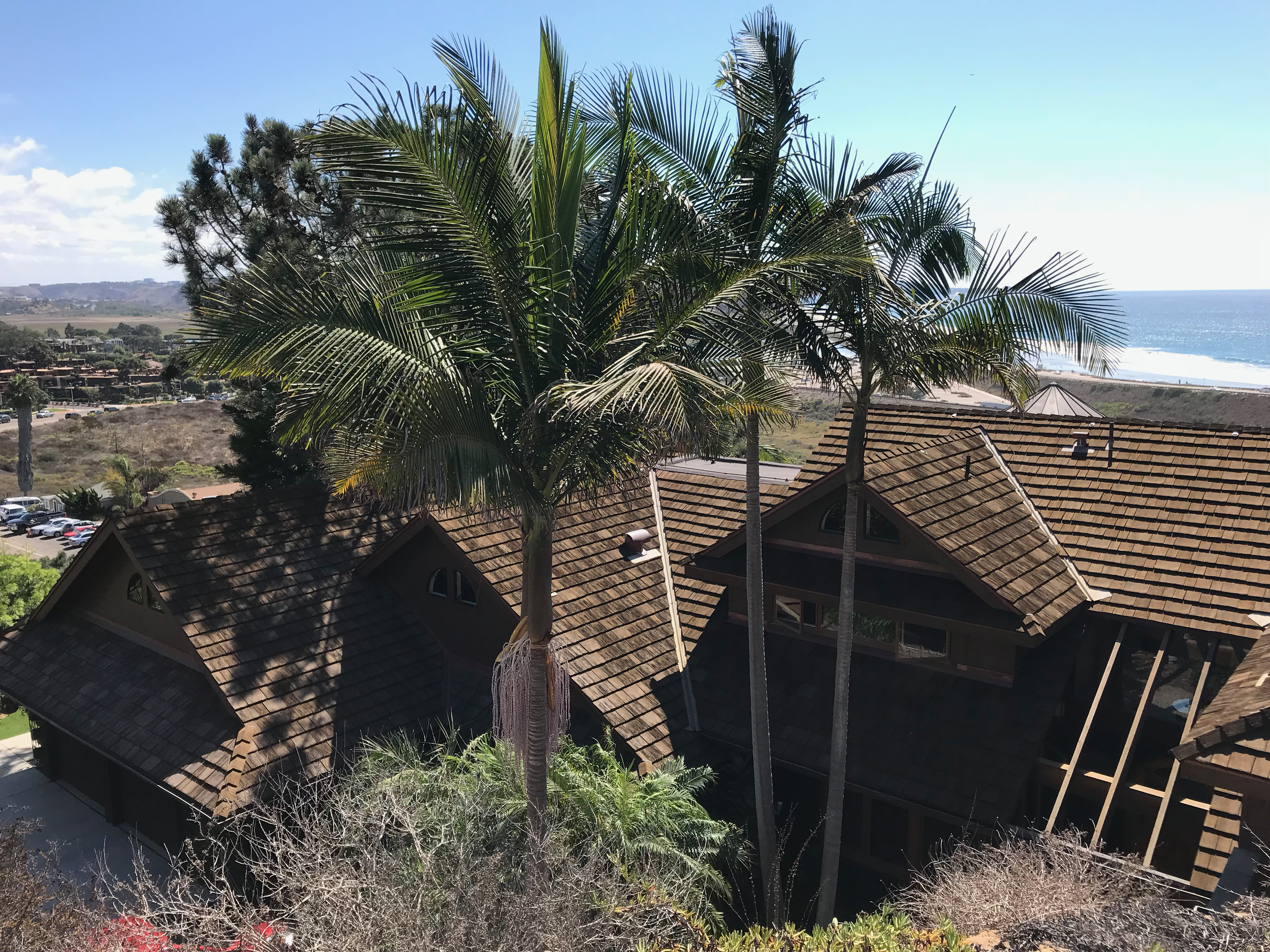cedur-live-oak-roof-installed-by-local-contractor-in-southern-california-gen-819.png