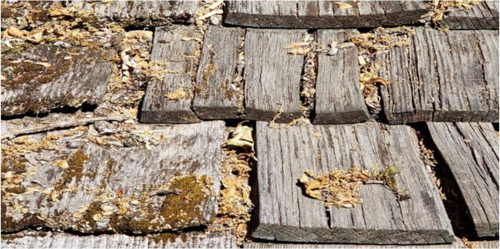 natural-wood-shake-with-mold-algae-growth-damaged-by-weather.png