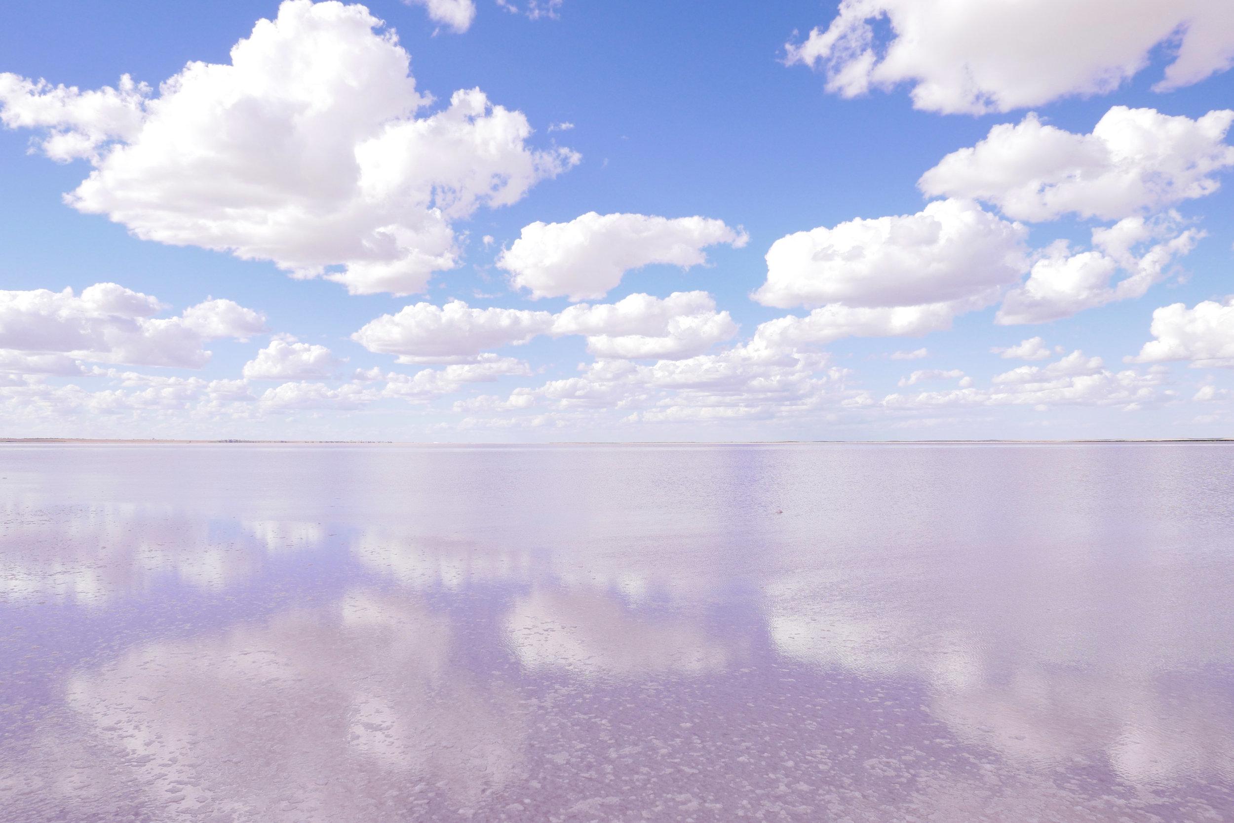 lake tyrrell - pink mirror.jpg