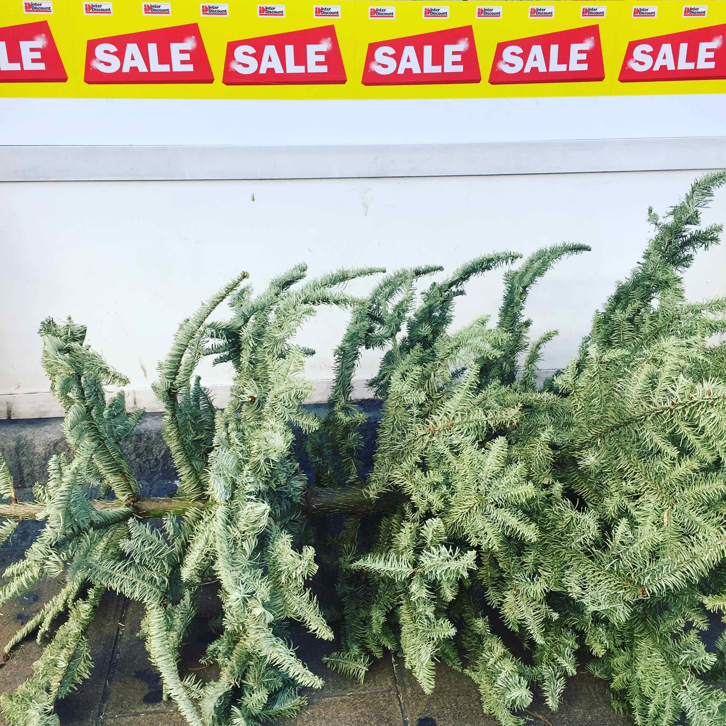 It's the time of sales: everything must disappear! And your beloved xmas tree first, to make some space for the new plasma screen you gonna buy 50% of the price. Priorities my friends!