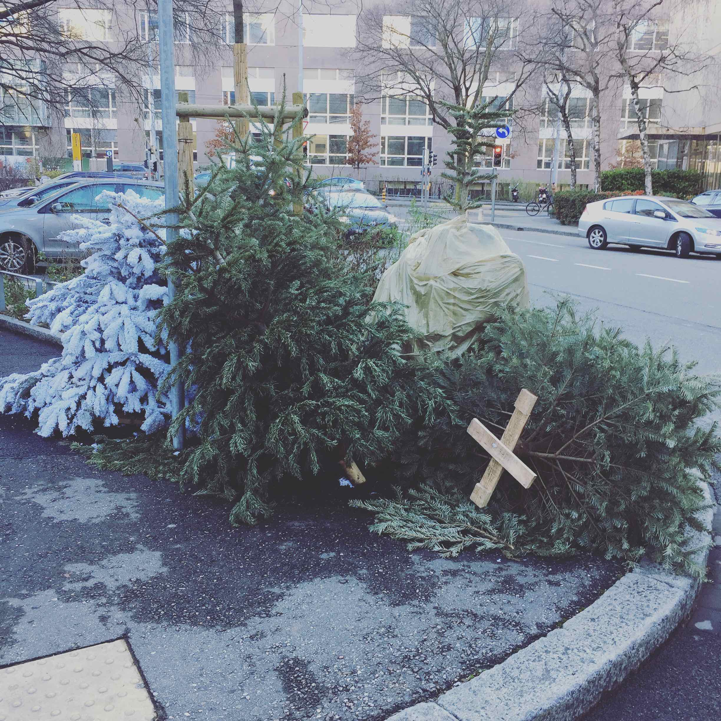 This day was terrifying. Every street was strewed by Xmas Trees. Few got thrown naked when other where covered with grave clothes. One even had suffer from a cryogenic experiment... how far is going humanity?