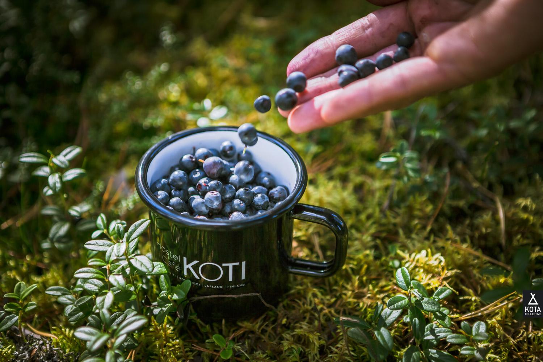 KotaCollectivePhoto-9570.jpg