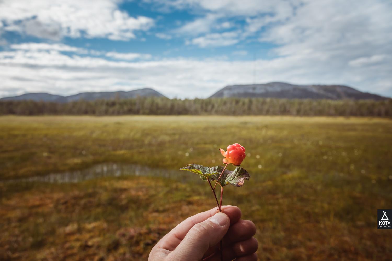 Pyha-Luosto-Matkailuyhdistys-KotaCollectivePhoto-8421.jpg