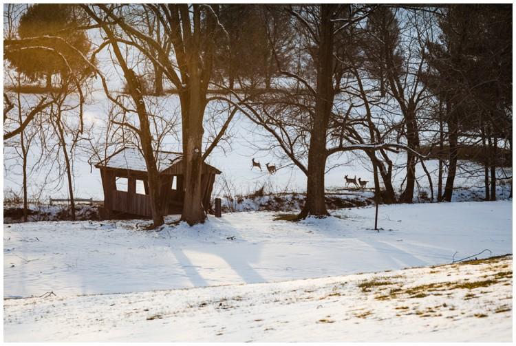 hhcc-winter-styled-shoot_0011.jpg