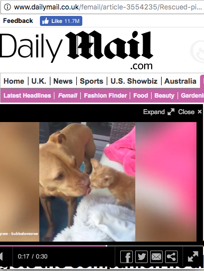 Daily Mail.png