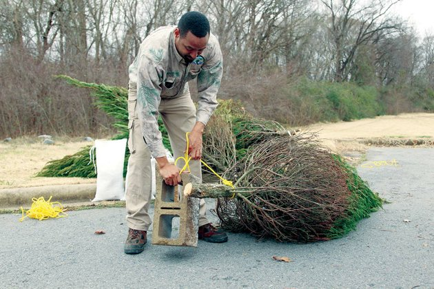 Create fish habitats by sinking your trees (via Keep America Fishing)