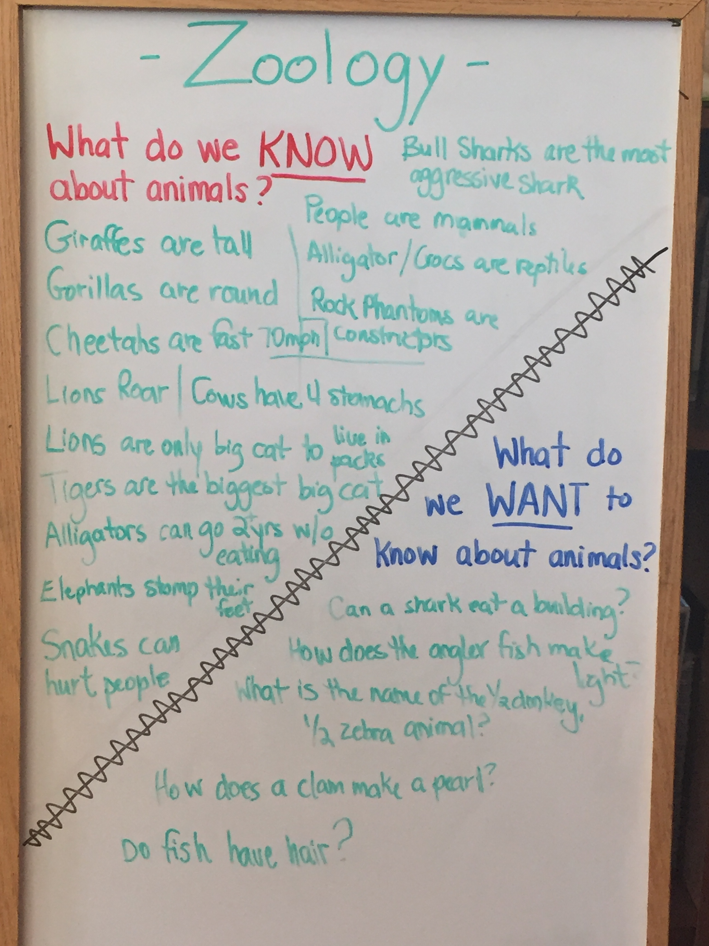 What Do We Know/What Do We Want To Know?