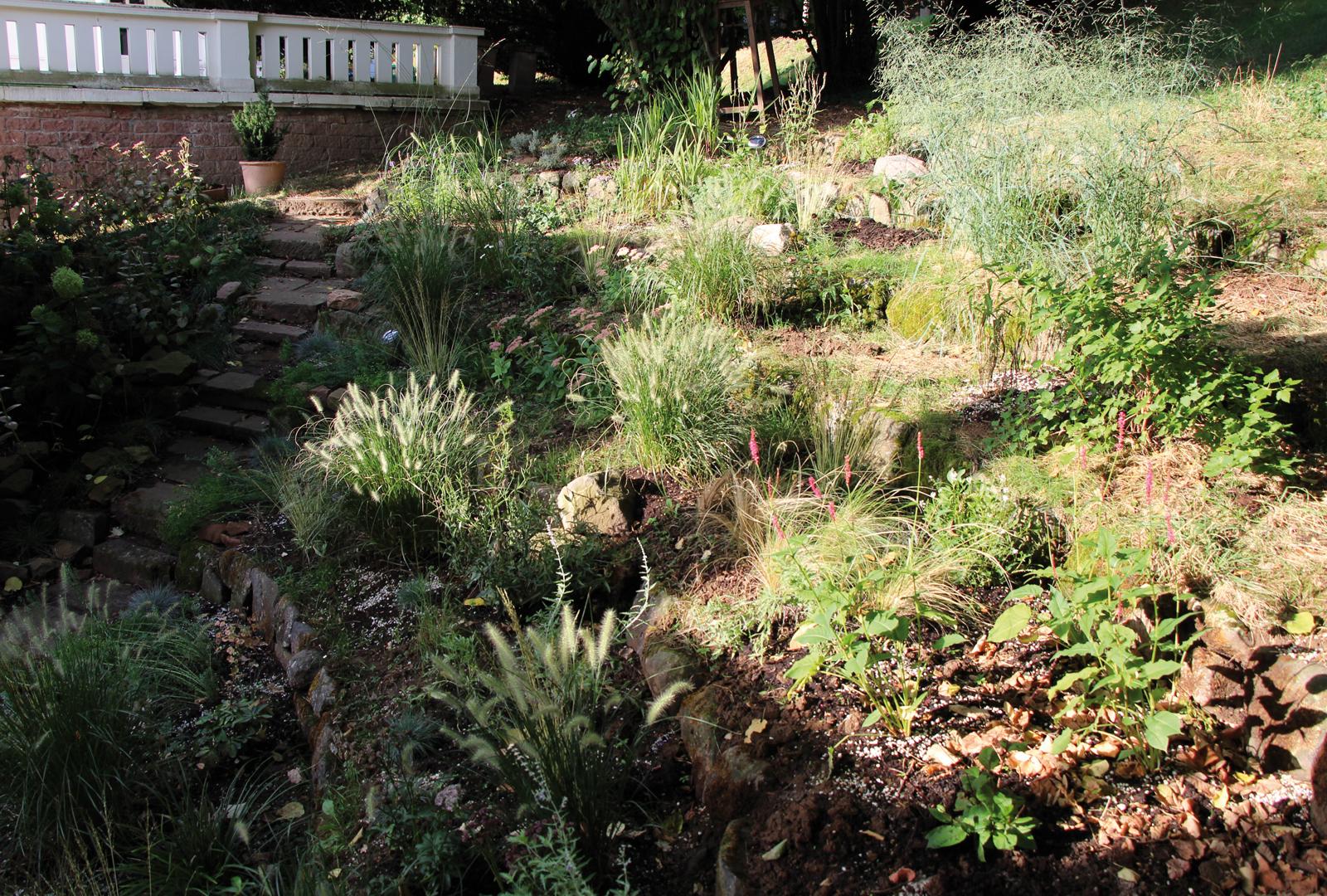 Terrassengarten mit Stauden und Gräsern