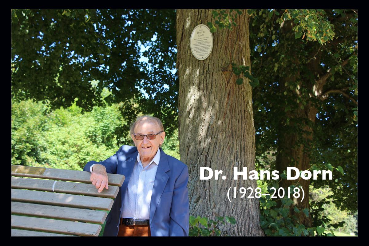 Dr. Hans Dorn im Juli 2018 unter »seiner« Linde im Schlosspark Ramholz