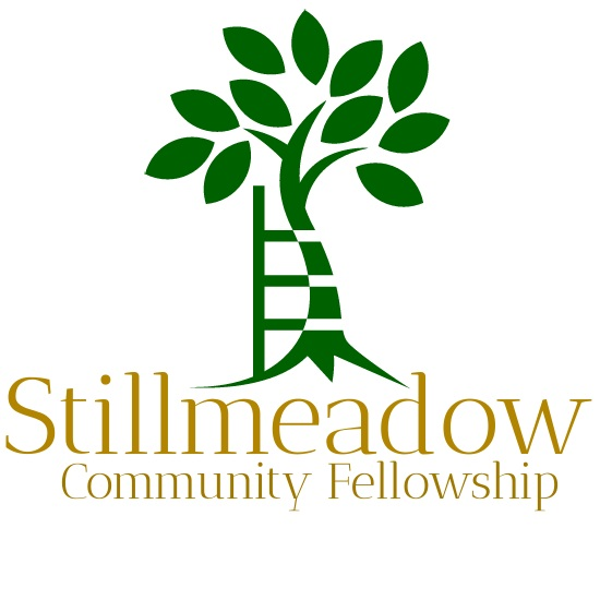 Check out our photo albums and see what is happening at Stillmeadow! -