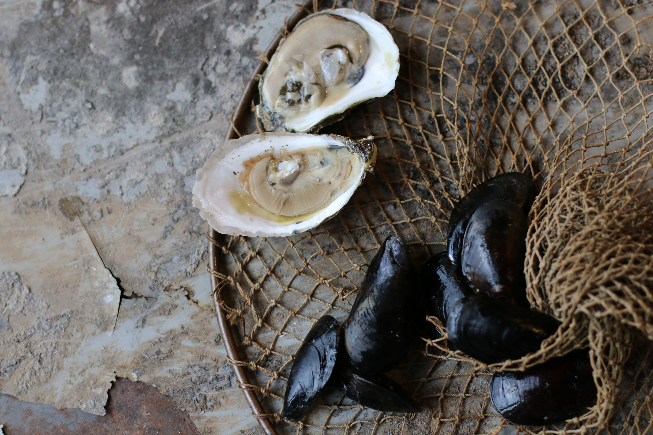 Jack Lukey's Oyster Saloon & Caviar Bar - The freshest catches, served daily