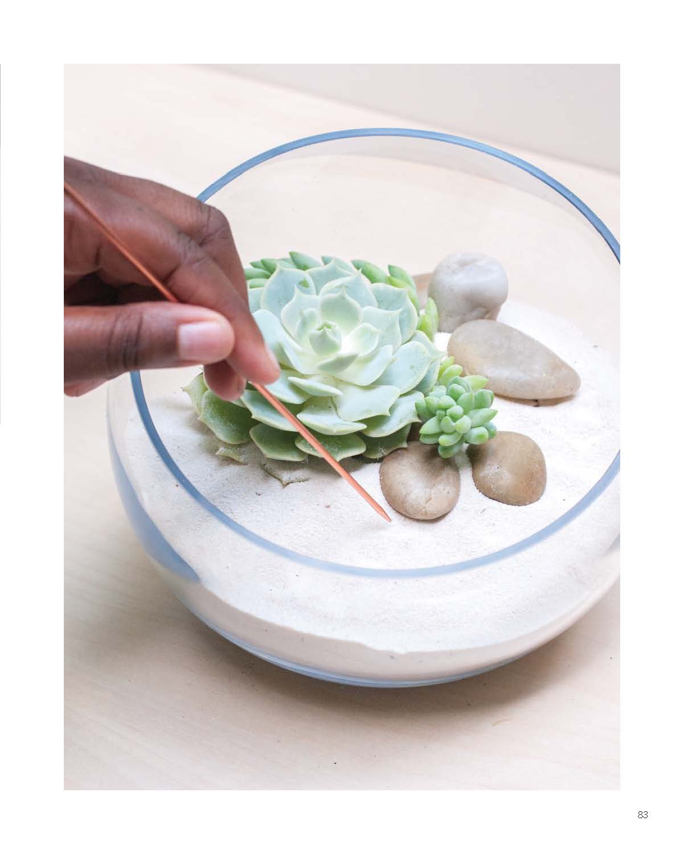 Modern Terrarium Studio - Mini Meditation Garden beauty image II