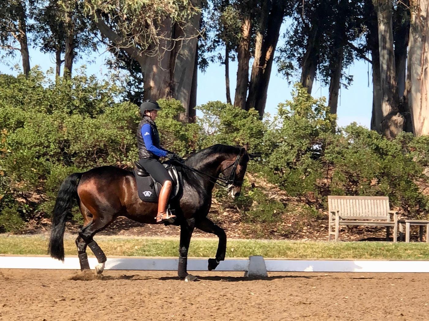 Amateur & Junior Riders -