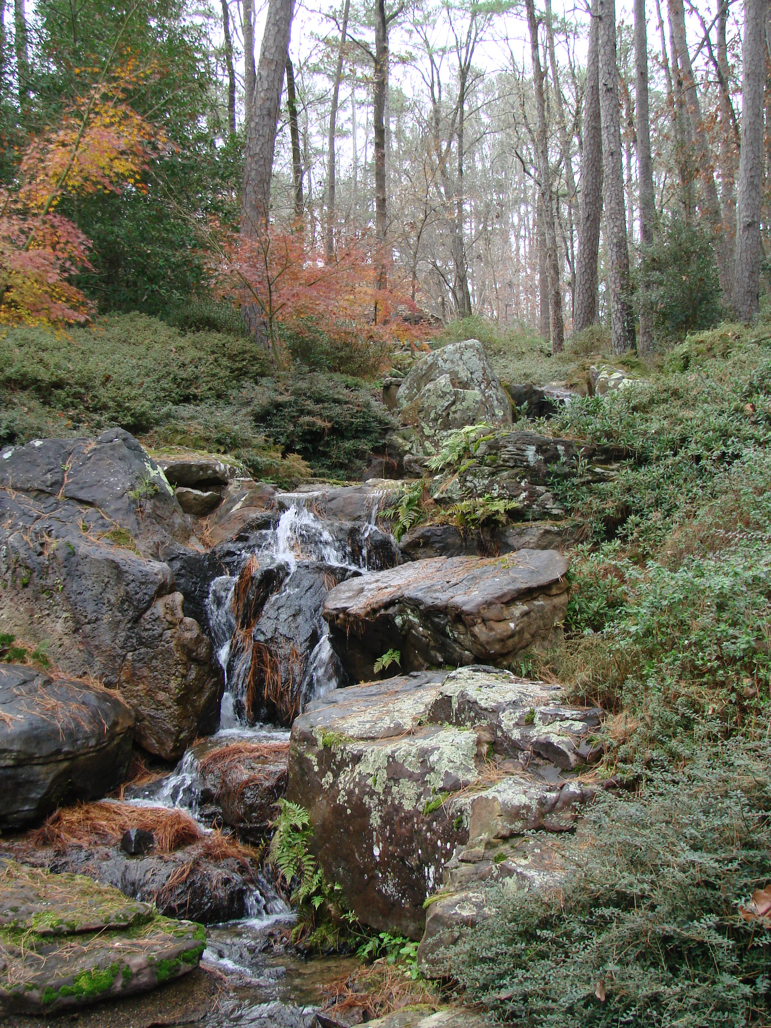 GarvanWoodlandGardens_Waterfall2.JPG