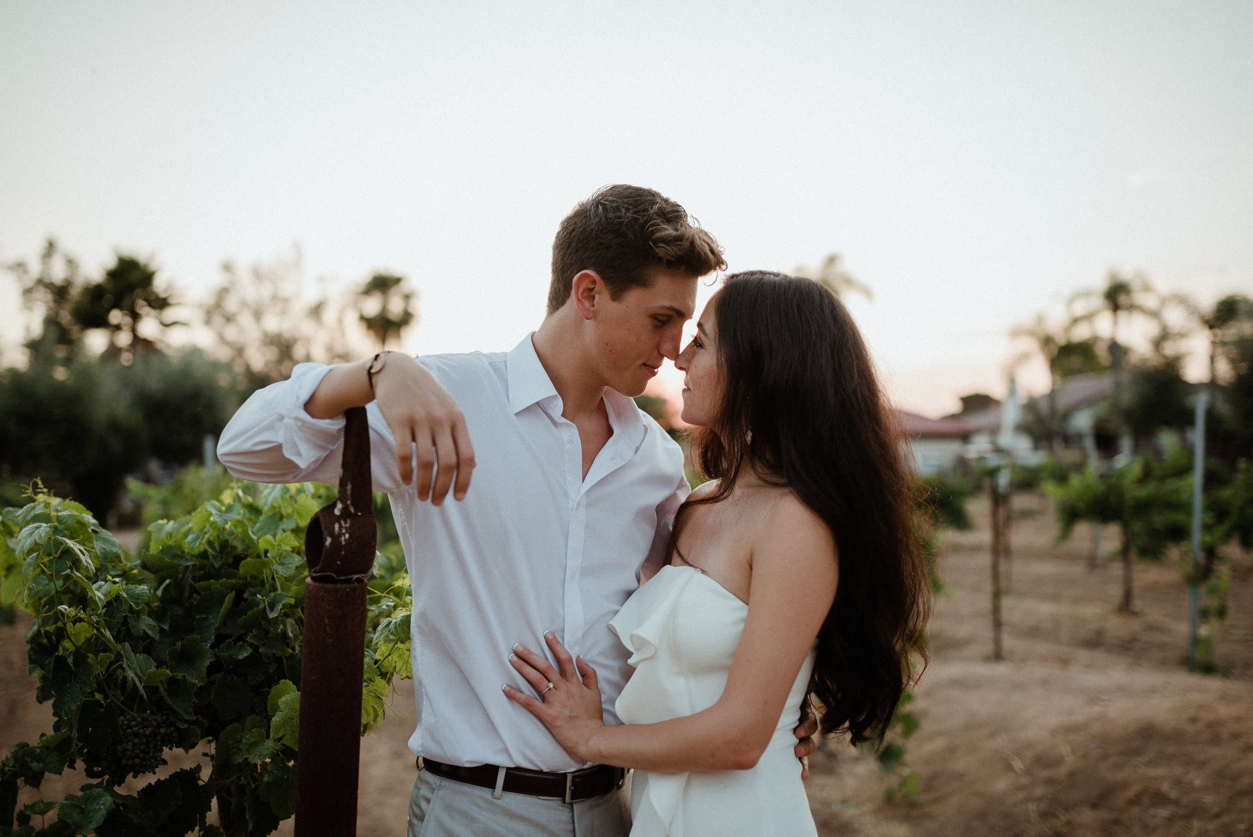 SanDiego-California-Bernardo-Winery-WashingtonDC-wedding-photographer-earthy-desert-wedding-LizRachelPhoto_0020