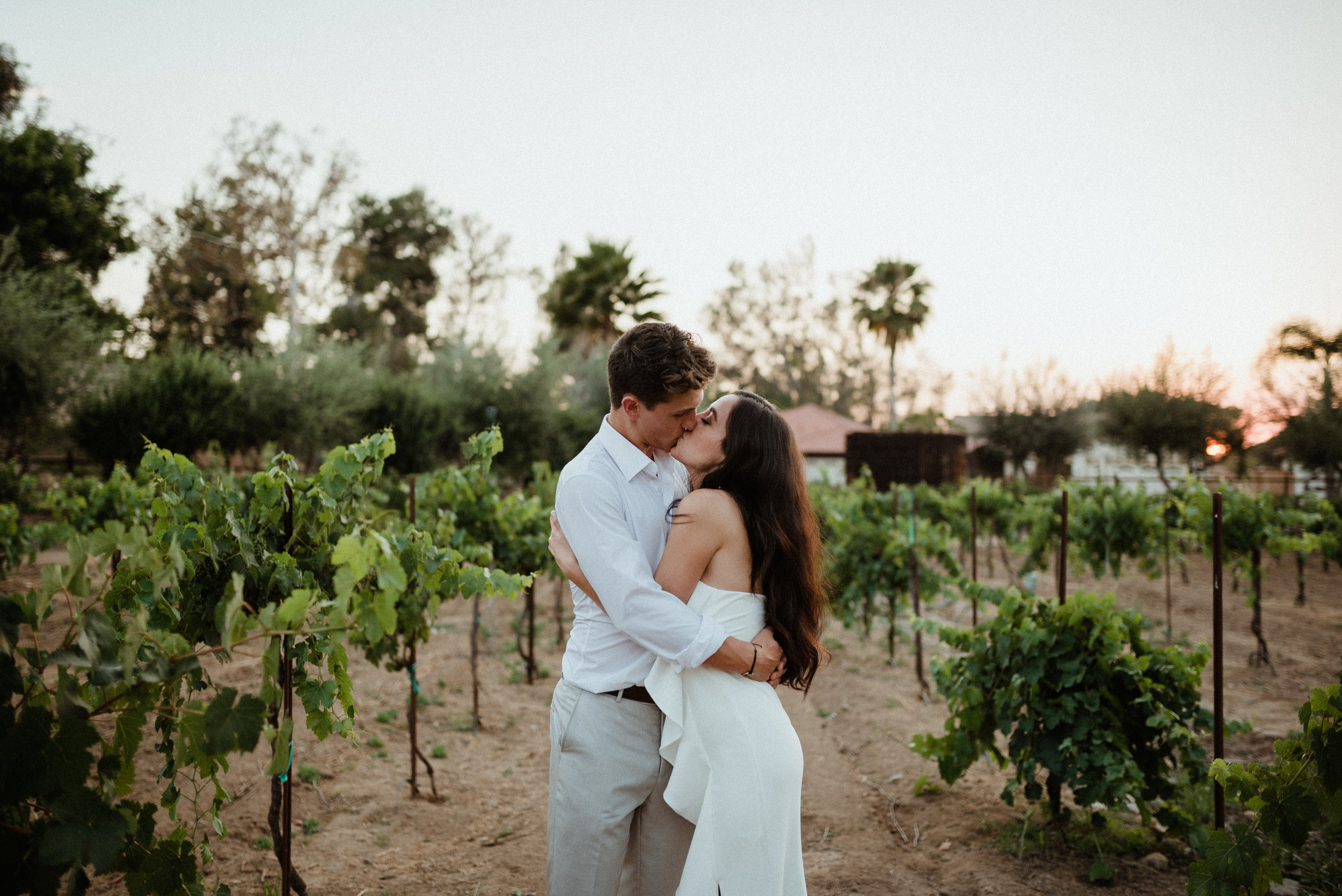 SanDiego-California-Bernardo-Winery-WashingtonDC-wedding-photographer-earthy-desert-wedding-LizRachelPhoto_0033