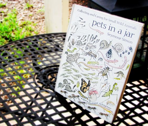 Pets In A Jar 1.jpeg