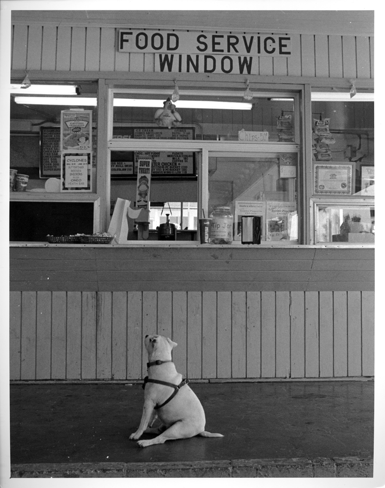 How much is that burger in the window?  Lusk, Wyoming, 2006. Of course Lucky got some cheeseburger.
