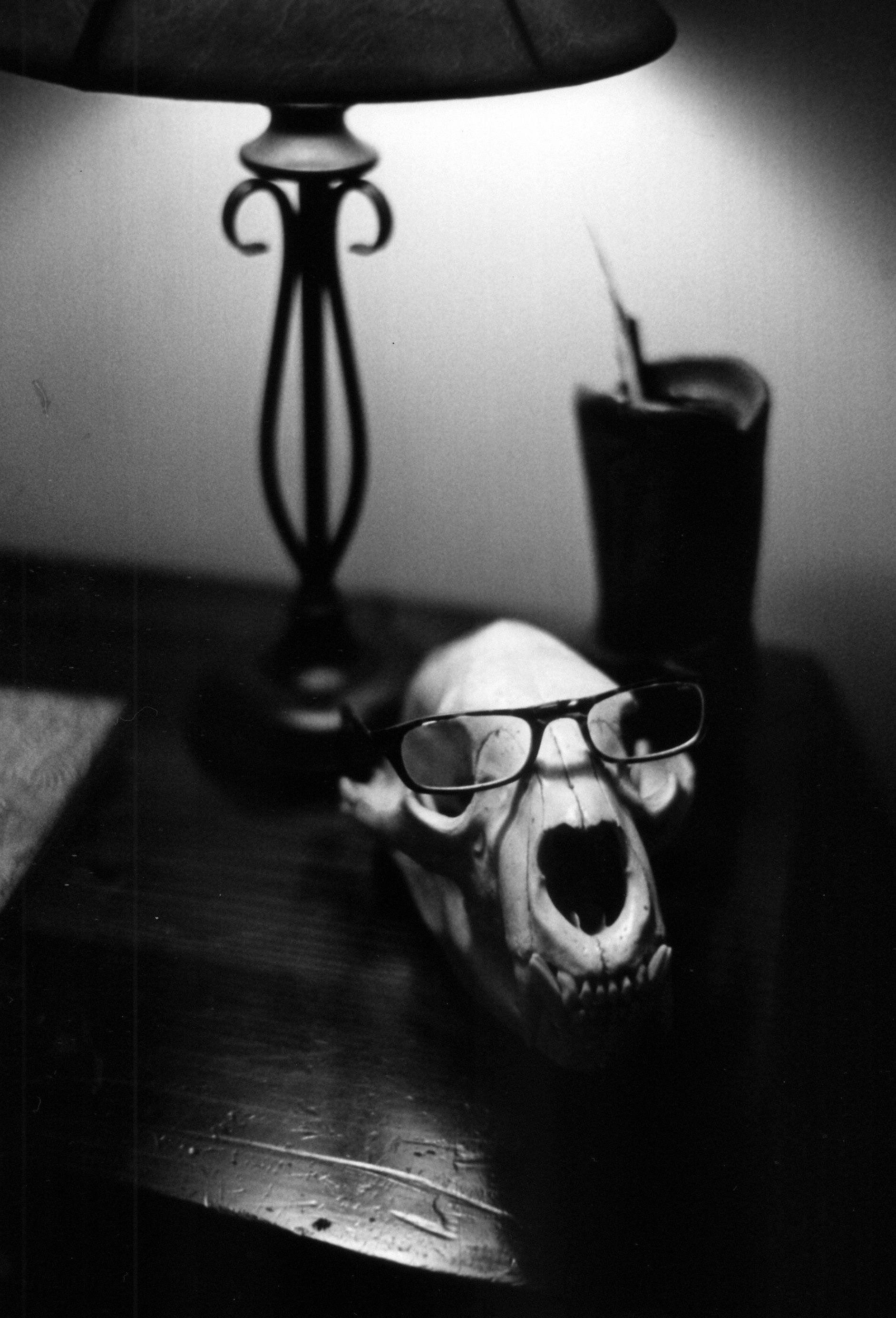 Mike's glasses rest on a bear skull.