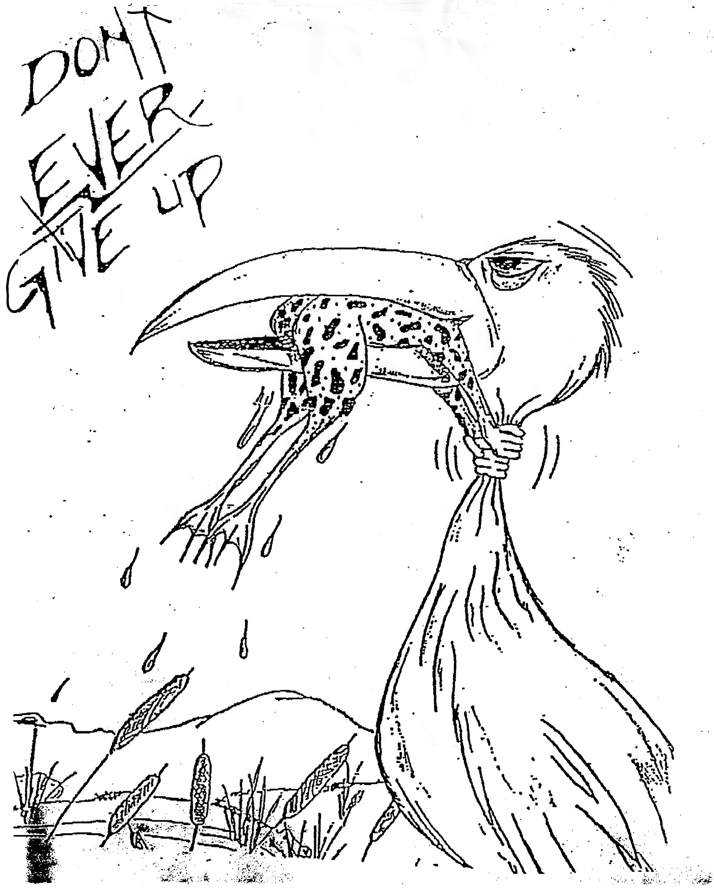 This drawing of a Great Blue Heron, which was posted on a bulletin board in the hospital that cared for my mother after her stroke, is accurate. Great Blue Herons will eat any small animal they can get their bills around.