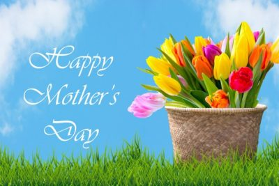 tulips-in-basket-mother-day-card-e1494777629160.jpg