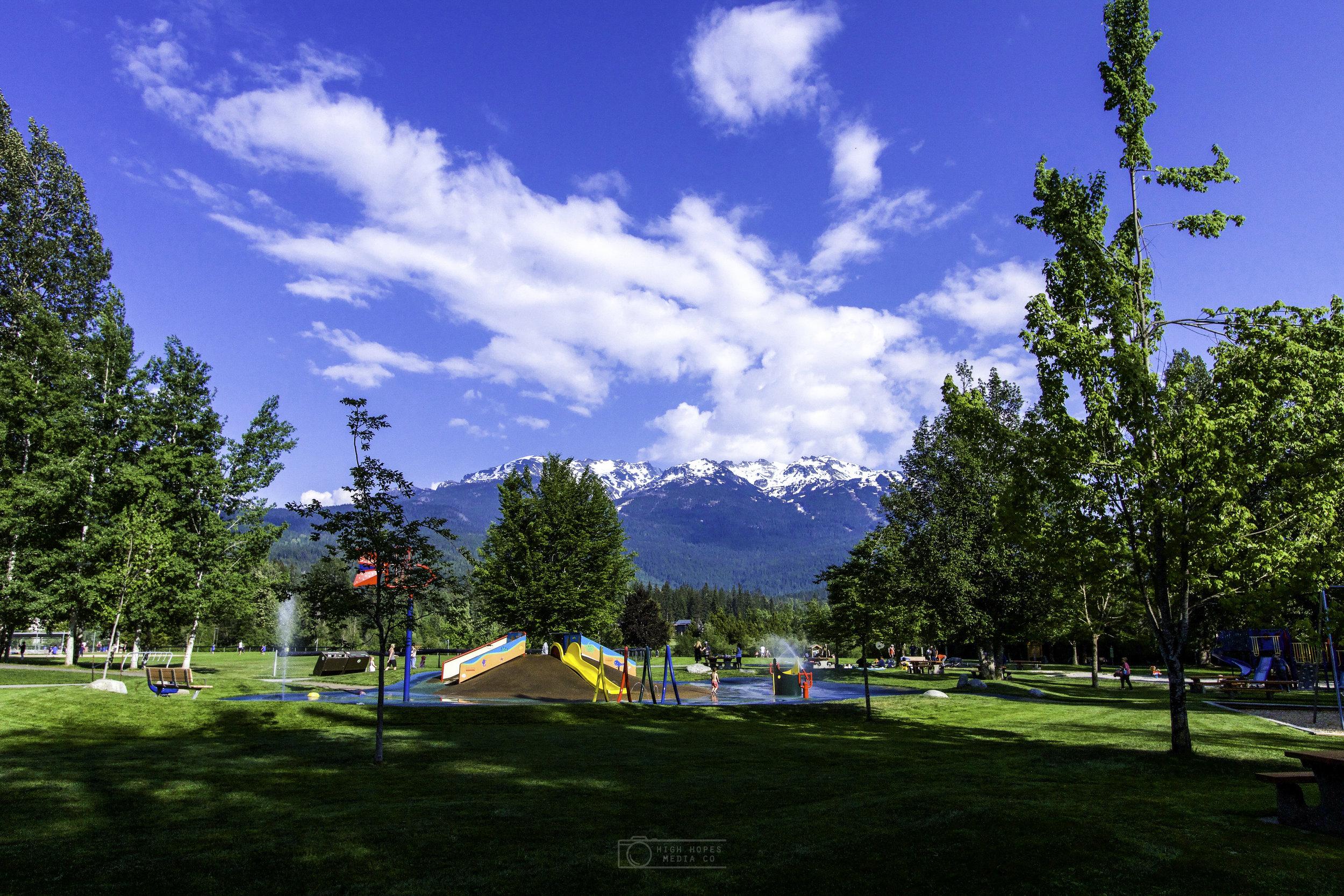 Meadow Park -