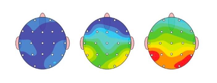 brain maps.jpg