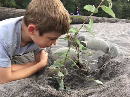 Learning Inspired by Nature - MSB's learning environment reflects our profound respect for what nature can teach our children. We build with responsible environmental stewardship in mind.