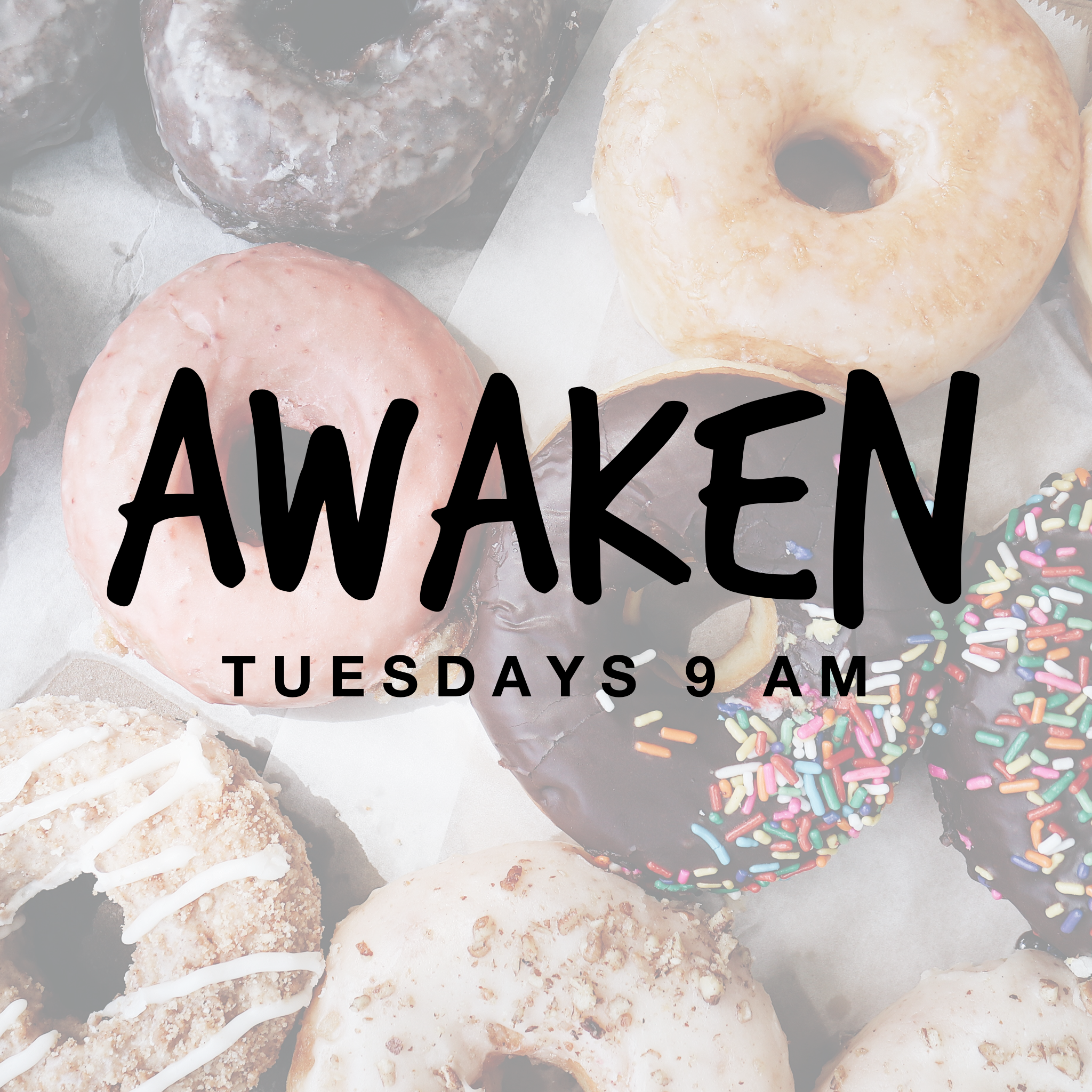Do you like donuts? - Join us for daily Mass at POP in the atrium followed by donuts, games and fellowship in the youth center! Come relax, hang out with friends and well… eat donuts! We start June 11th!