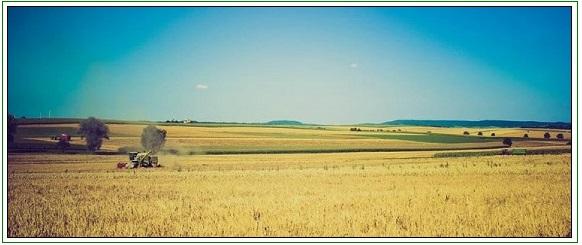 farm appraiser western illinois