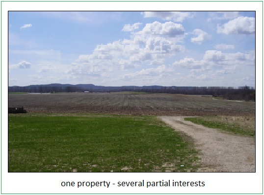 farm appraiser fractional interest
