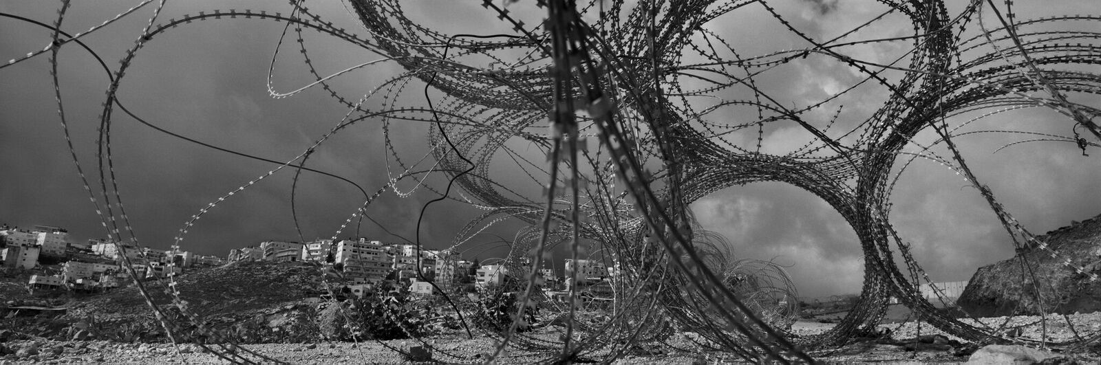 Barbed wire on the Israeli/Palestine border.