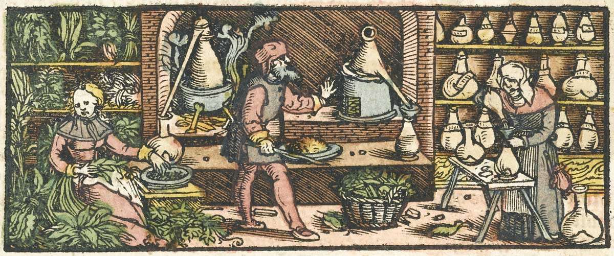Woodcut engraving from the mid-16th century depicting the process of distilling essential oils from plants with a conical condenser. Wellcome Library, London.