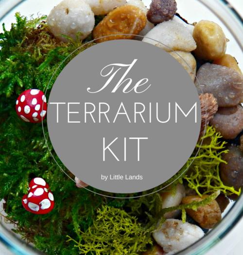 Little Lands Terrarium Kit - Just Add Plants