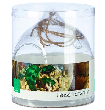 Shamrock Natural's Terrarium Clear 10cm