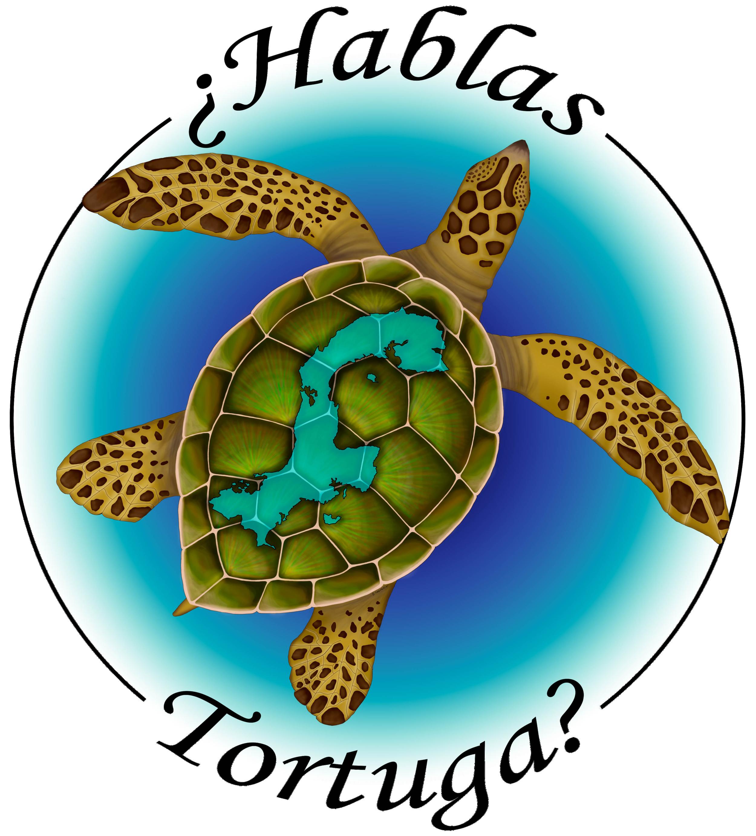 Hablas Tortuga