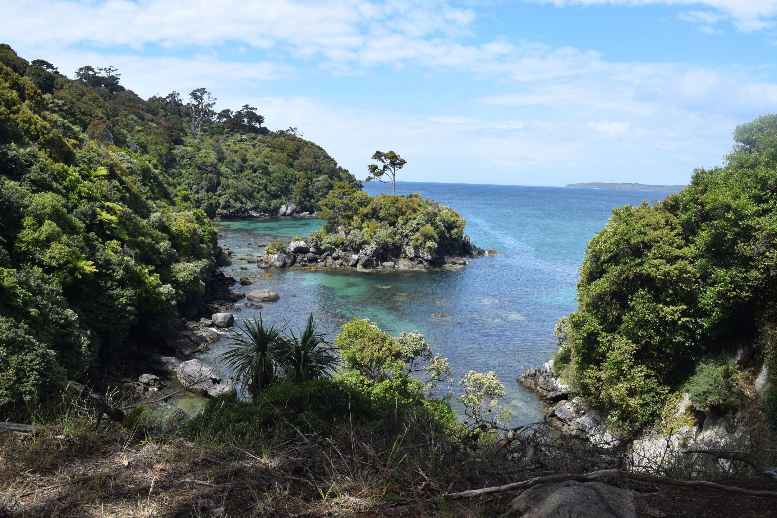 A view over the coast of Stewart Island, from the Horseshoe Track near Oban.