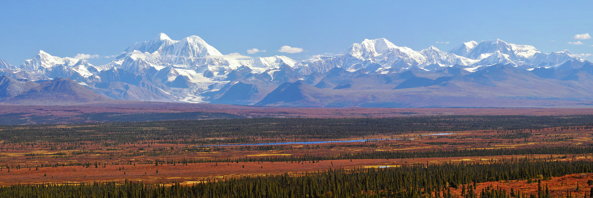 Alaska's wilderness is unrivaled, and protected thanks to Celia Hunter. Image by  Paxson Woelber .