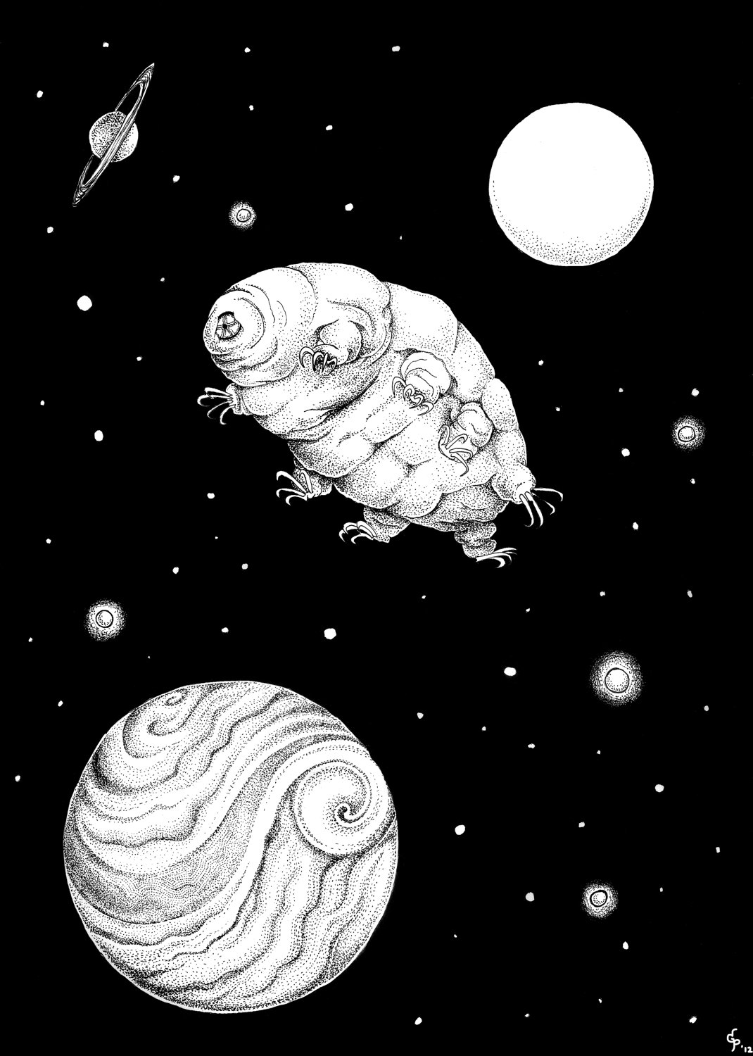 Tardigrades are the only known organisms to be able to survive exposure to space. Image from the TARDIS (Tardigrades In Space) Project, via  Team Tardigrades .