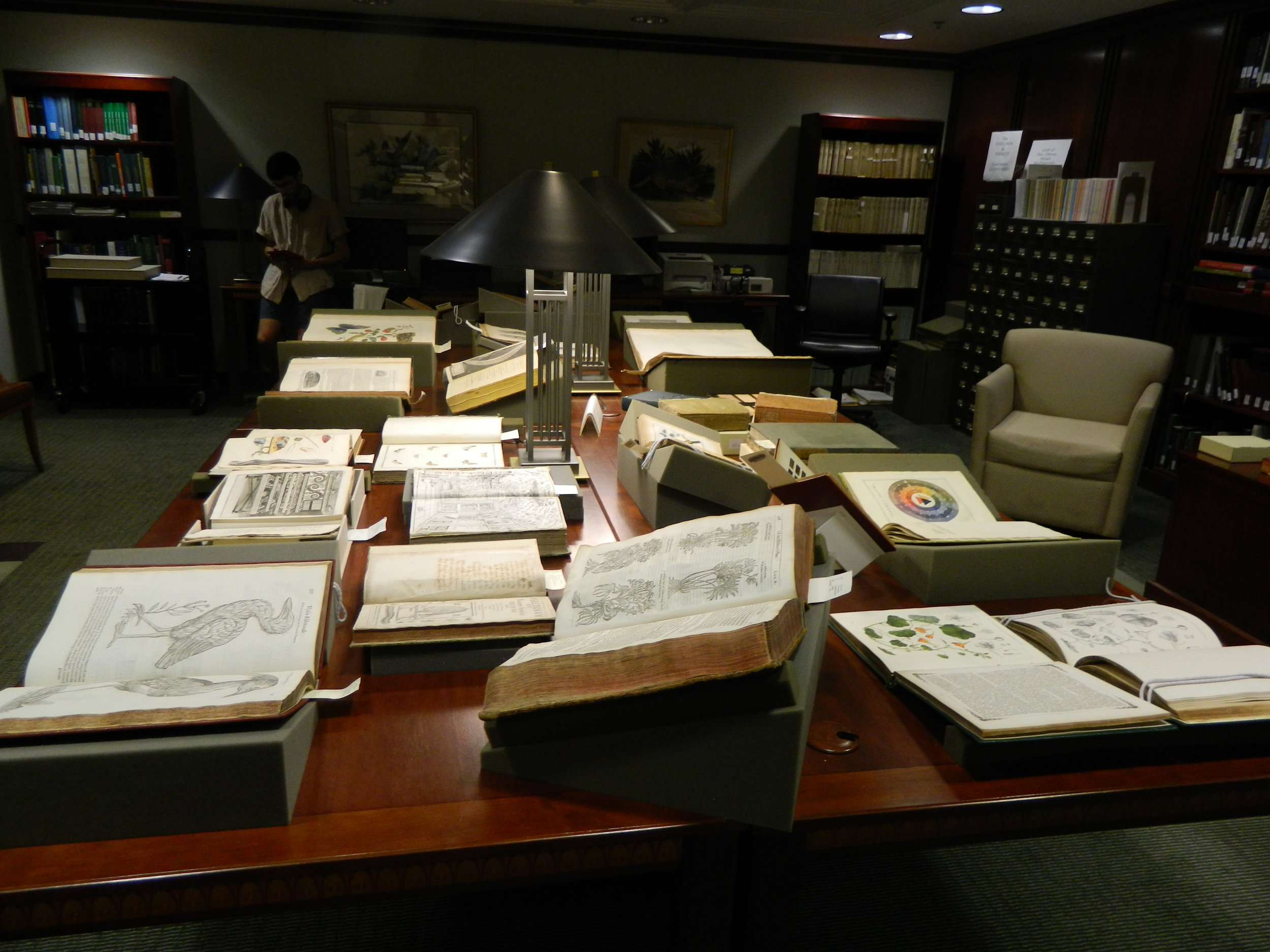 The reading room in the Cullman Library in NMNH. I spent many afternoons here in 2015...