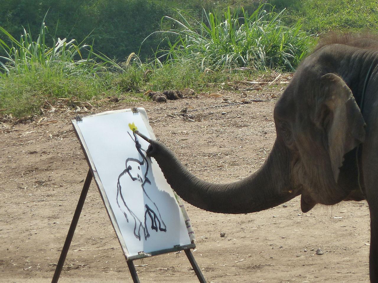 An elephant paints a self-portrait. Image by  Deror Avi .