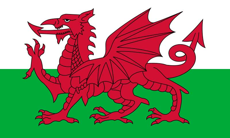 The Welsh flag. Wales is one of many places around the world to have a fascination with dragons.