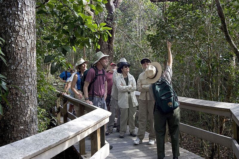 A park ranger delivers an interpretive talk for visitors to Everglades National Park, Florida. Image from    NPS   .